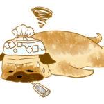 【フリー素材】熱中症のパグイラスト