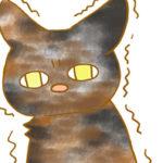 【フリー素材】トイレ中のサビ猫さん