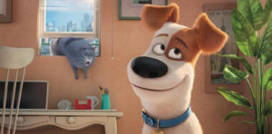 【アニメ】ペット、ペット2の主人公「マックス」の犬種とは