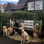 イギリスで選挙といえば!「投票所の犬たち」