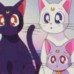 【アニメ】セーラームーンに登場する猫たちの名前や役割とは?