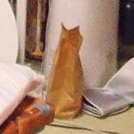 「…!ネコチャン!?…あ、違ったわ…」猫好きを翻弄する猫っぽいものたち