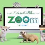 動物園の動物をオンライン会議にご招待!