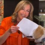 犬たちの全身全霊の映り込み動画集