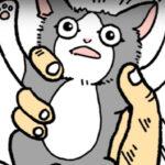 車の中から這い出てきた子猫、無事保護!