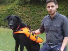 声やジェスチャー以外で犬へ指示できる装置